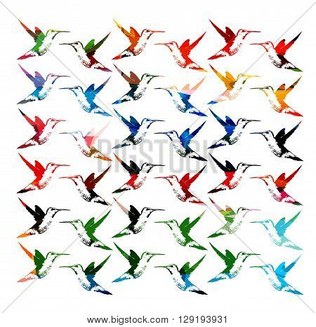 Vector illustration of colorful pattern with hummingbirds