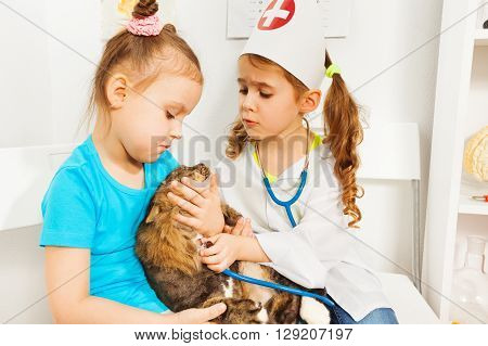 Little girls playing vet with stethoscope and cat at the vet clinic.
