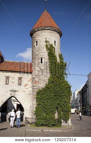 TALLINN ESTONIA- JUNE 18: tourists on the entrance from the Viru Gate of the Old city on June 18 2012 in Tallinn Estonia