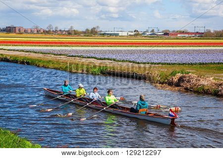 Lisse Netherlands - April 23 2016: canoe with unidentified paddlers between tulip fields near Lisse. Lisse is world renown for the Keukenhof and the large tulip fields in the region.