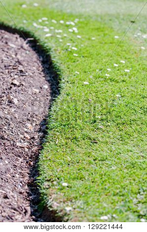 Soil in an empty flower bed with a curved grass edge in sunshine