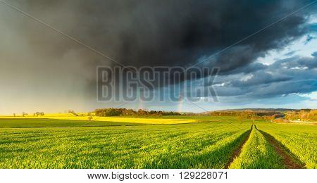Spring Rain Shower and Double Rainbow over Fresh Green Farm Field