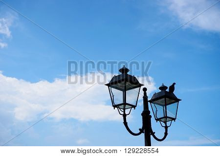 lamp post with bird (space for text)