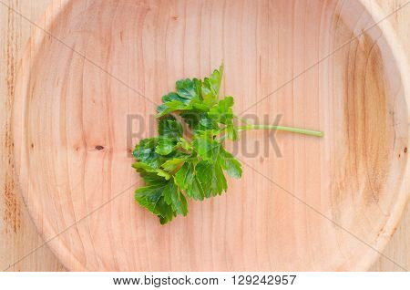 One sprig of fresh green parsley in a wooden plate, selective focus, rustic style.