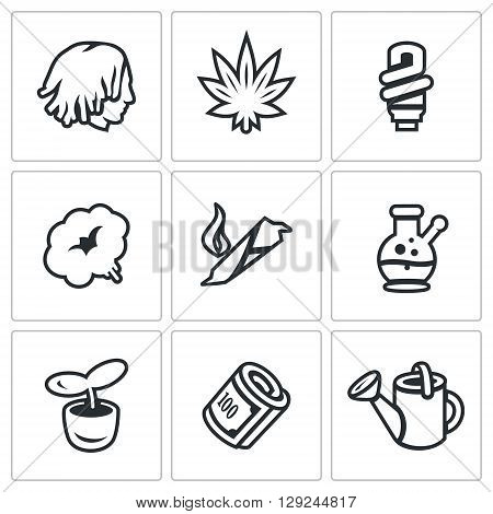 Person, Plant, Bulb, Smoke, Cigar, Cannabis, Finance, Watering can