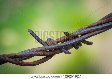 Wrapped Strands Of Wire Fence