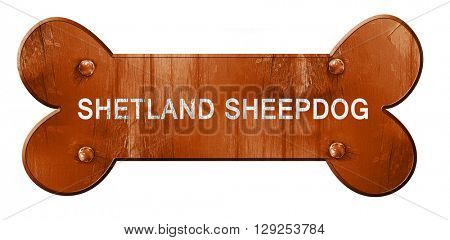 Shetland sheepdog, 3D rendering, rough brown dog bone