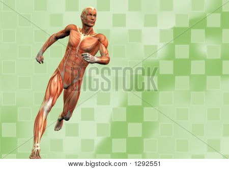 Muscle Man Background