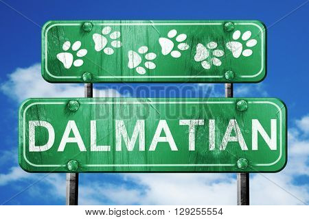 Dalmatian, 3D rendering, rough green sign with smooth lines
