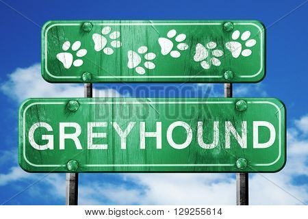 Greyhound, 3D rendering, rough green sign with smooth lines