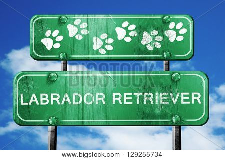 Labrador retriever, 3D rendering, rough green sign with smooth l
