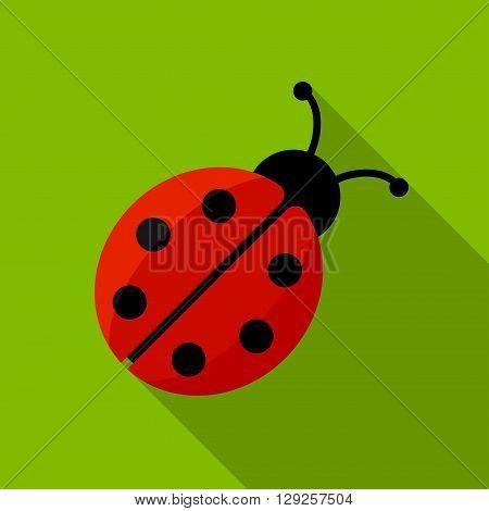 Ladybug icon illustration isolated vector sign symbol