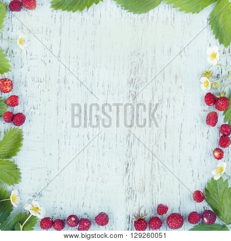 Wild strawberries on light blue wooden background with hazy vintage editing