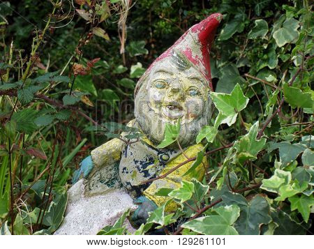 Weathered old garden gnome with brambles and ivy