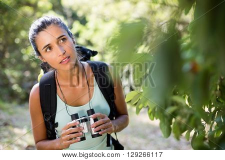 Woman concentrated holding binoculars on the wood