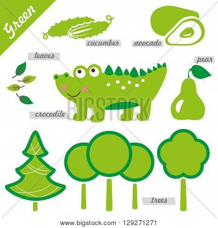 set of images as examples of green color for kids educational purposes illustrations page of color book trees pear avocado cucumber foliage crocodile alligator spruce fir tree forest leaves pine