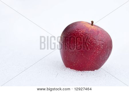 Aged apple on white snow