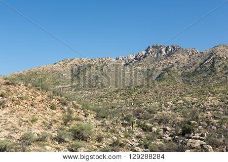Mountains rise above the Arizona desert in the Santa Catalinas