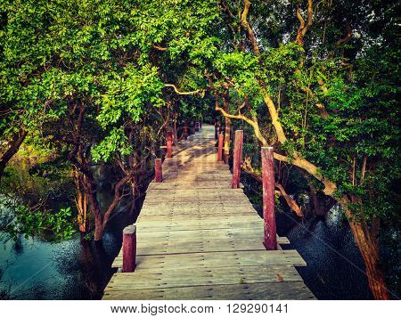 Tropical exotic travel concept - vintage retro effect filtered hipster style image of wooden bridge in flooded rain forest jungle of mangrove trees near Kampong Phluk village, Cambodia
