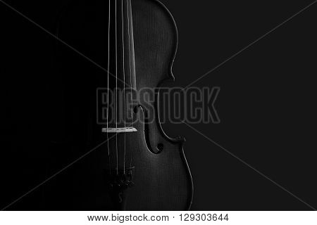 Violin black and white artistic conversion with rim lighting