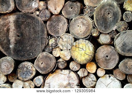 Pile of wood logs stack of old tree trunk
