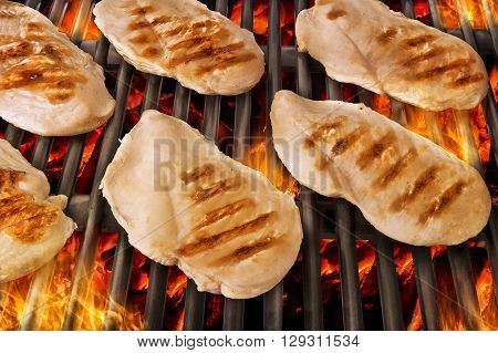 Healthy chicken breasts cooked on a BBQ. Close up view.