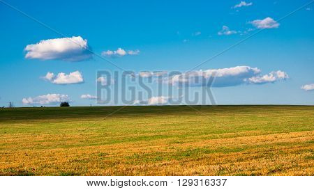 harvested field against the blue sky, clouds, countryside,
