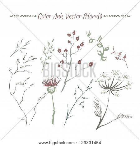 Set of hand painted ink florals. Great for Save the Date, seasonal greeting cards. Artwork for your design.