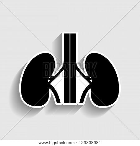 Human kidneys sign. Sticker style icon with shadow on gray.