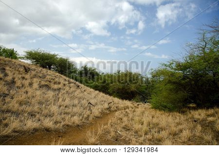 Hills Near Hapuna Beach