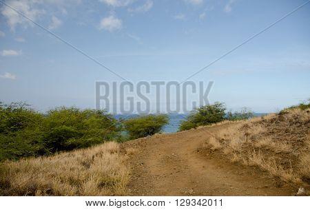 Narrow Road Near Hapuna Beach