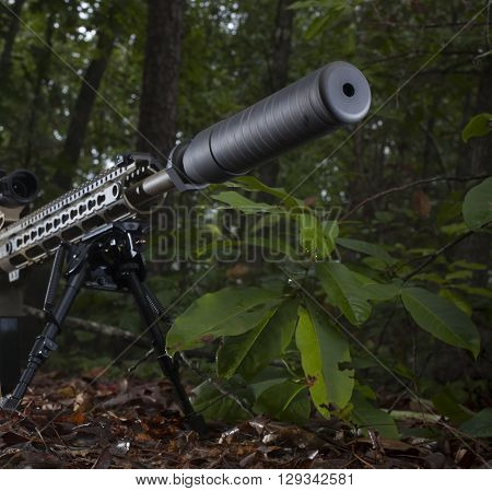 Silencer at the end of a rifle that is in a bunch of trees
