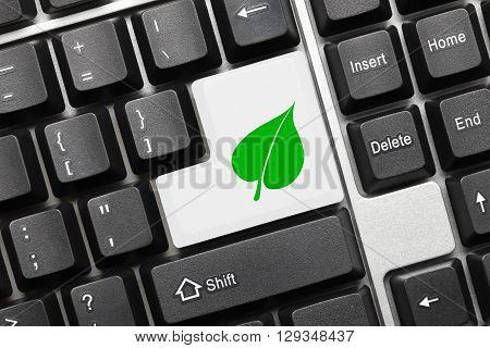 Conceptual Keyboard - White Key With Green Leaf Symbol