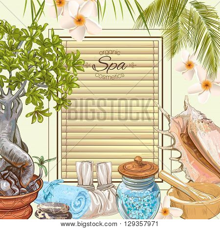 Tropic style spa treatment colorful frame with bonsai, shells, frangipani and stones .Design for cosmetics, store, spa and beauty salon, natural and organic health care products. Vector illustration.