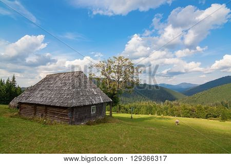 Stunning rural farm with old wooden hut Bran, Carpatians, Romania, Europe