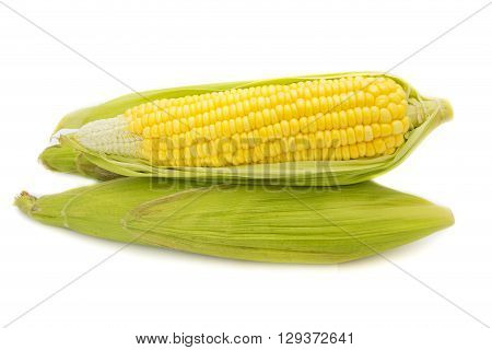 Fresh corn on cobs on white background closeup