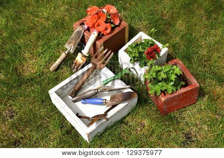 Wood boxes filled flowers and a  white box containing old garden tools