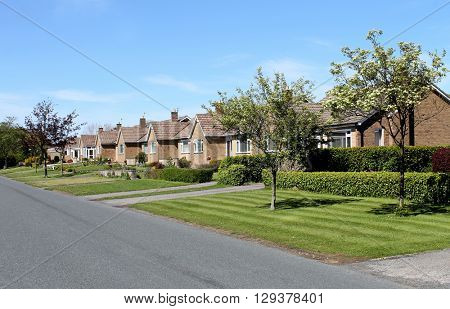 Scenic view of a row of village bungalows, Scalby, Scarborough, North Yorkshire, England.