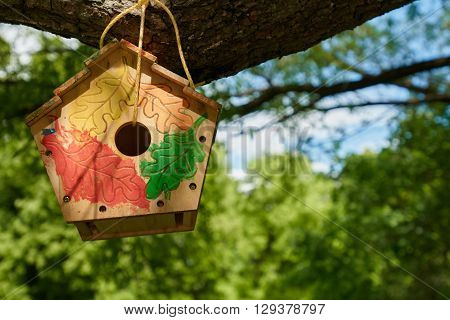 Nesting box hanging on the tree, park in the summer