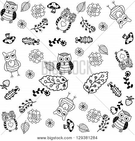 hand drawn owl doodle art with white backgrounds