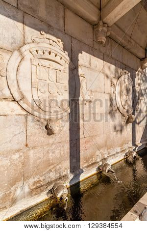 Fontinha, the renaissance fountain in Republica Square of Alter do Chao. Detail of the Portuguese Coat of Arms. Portugal.