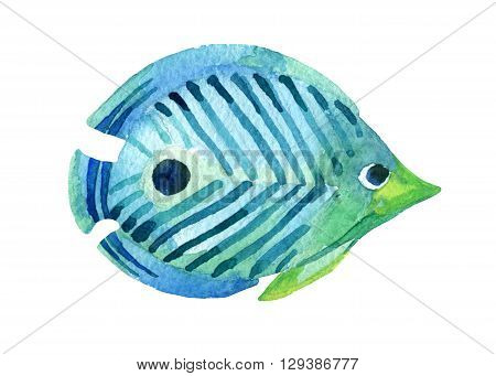 Butterfly fish isolated on white background. Watercolor raster illustration
