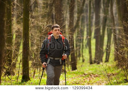 Active healthy man with red backpack hiking in beautiful forest.