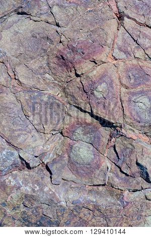 Portrait of a stone. Stone cracked texture of red and brown color with patterns of circles on fragments
