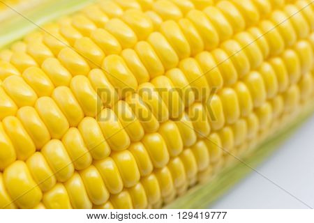 close-up of the the sweet corn on the white background
