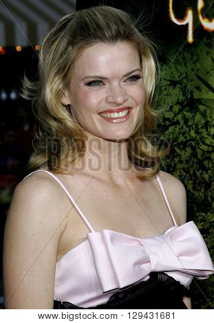 Missi Pyle at the Los Angeles premiere of 'The Reaping' held at the Mann Village Theater in Westwood, USA on March 29, 2007.
