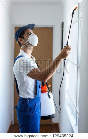 Side view of worker using pesticide on window at home