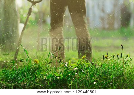 Cut Grass with Lawn Mower,House Village Country ,Nature Agriculture Green Worker;Dandelion;Selective Focus