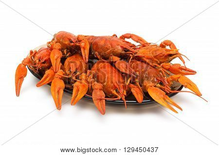 boiled crayfish on a plate isolated on white background. horizontal photo.
