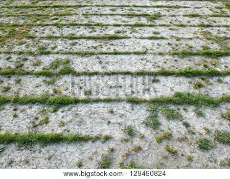 lines of grass left on old turf field